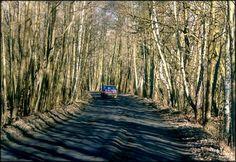 Droga z Mariewa do Truskawia - Mały Truskaw