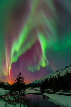 Aurora Borealis - Alaska. I was lucky enough to see an amazing aurora in Fairbanks, Alaska.  blog.carljohnsonphoto.com