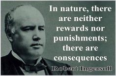 Robert Ingersoll. // In nature nothing happens for a reason. There is no plan. The universe is indifferent.