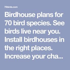 Birdhouse plans for 70 bird species. See birds live near you. Install birdhouses in the right places. Increase your chances of attracting bird families. Woodworking Techniques, Woodworking Projects, Bird House Plans Free, Bird Houses Diy, Garden Yard Ideas, Bird Boxes, How To Attract Birds, Nesting Boxes, Bird Species