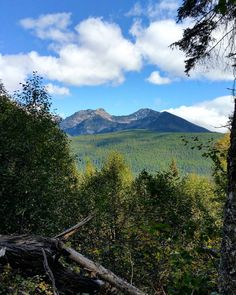Awe invoking views are around every corner on some of my favorite #GlacierNationalPark trails! . . . . . . . . . . . . . #getoutside #glacier #hikingpaula #hiker #hiking #trail #mountains #trees #green #beautiful #view #life #love #optoutside #Montana #sky #Flathead #valley #nationalpark #sun #sunnyday #blue #wilderness #followme #forest #instagood #doit #bucketlist