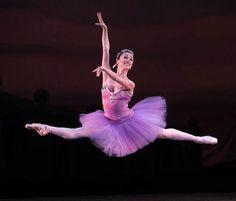 Miami City Ballet Dancers Take to the Airwaves