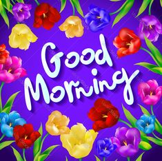 Floral fashion design card with slogan, good morning vector print, tulip art stock vector Good Morning Wishes Pictures, New Good Night Images, Free Good Morning Images, Good Morning Texts, Good Morning Coffee, Good Morning Picture, Good Morning Flowers, Good Morning Messages, Good Morning Good Night