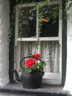 cottage at Bunratty, Co. Clare