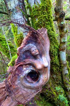 Let Mystery Have Its Place In You Tree Wind Woman by ShapingSpirit