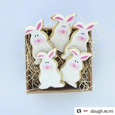 Easter is fast approaching. How cute are these bunnies!  #Repost @dough.re.mi with @repostapp #easter2017 #suzspetservices