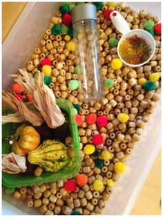 Fall Harvest Sensory Bin Play and Fine Motor skills for toddlers and preschoolers.