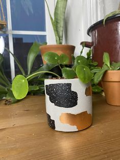 Accented concrete succulent planter that any little plant would be proud to call home. Spice up your home decor with this speckled and copper foil pot. Includes a drainage hole and rubber bumpers to protect your furniture from damage. Concrete Bowl, Concrete Planters, Planter Pots, Cactus Planters, Wall Planters, Poured Concrete, Concrete Crafts, Purple Bedroom Decor, Air Plant Display
