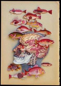 aquarium - hope kroll