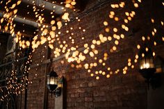 I would like to add lights for my wedding. These look nice