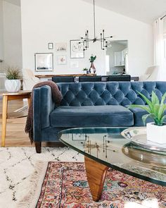 Trying to pick a new couch for your living room? Consider something cozy and chic and go with a velvet couch!