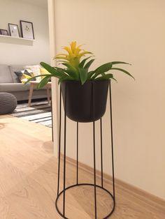 Menu Wire pot Planter Pots, Menu, Wire, Table, Furniture, Home Decor, Menu Board Design, Decoration Home, Room Decor