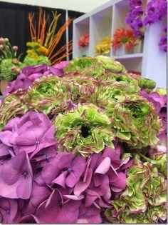 purple hydrangea, and green/purple ranunculus
