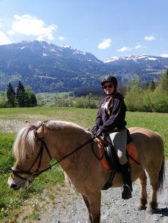 Reiten ist sicher eines der Eckpunkte in Sachen Freizeitgestaltung. 🐴  Jenny ist mit unserem Sternthaler auf Entdeckungstour am Gaildamm. Wunderbar 🥳 #nawukinderhotel #nawu #familienurlaub #sommerurlaub #kinderhotel #kinderbetreuung #babybetreuung #goldaward #kärnten #gailtal #naturerleben Riding Helmets, Horses, Animals, Hotels For Kids, Child Care, Summer Vacations, Family Vacations, Animales, Animaux