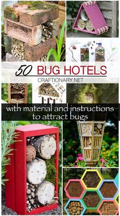 50 DIY bug hotels   material and instructions to attract bugs - Craftionary Backyard Projects, Easy Projects, Garden Projects, Garden Ideas, Butterfly Feeder, Bee Creative, Creative Ideas, Hummingbird Plants, Bug Hotel