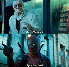 FINALLY SOMEONE CALLED STAN LEE OUT ON HIS CAMEOS!
