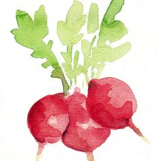 Small Radishes art print of watercolor painting от TheJoyofColor