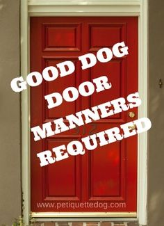 Good dog door manners should be a top priority in your arsenal of dog training.