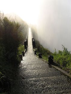 Haunting bridge in Zimbabwe, by Victoria Falls...