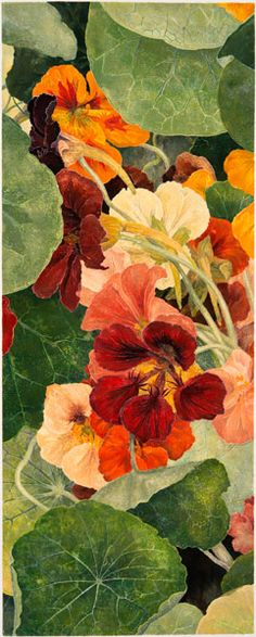 Cressida Campbell - Nasturtiums, woodblock print, watercolour on stonehenge paper