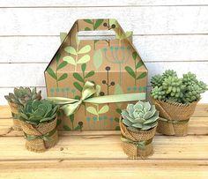 Christmas Succulent Gift Ideas.Pinterest
