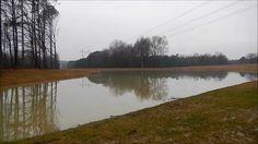 Building a pond final.