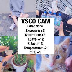VSCO CAM                                                       …