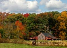 Old Barn In Early Autumn by pdmphotography for $12.50 #zibbet