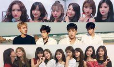 Kpop Idol Groups, Apink, WINNER, AOA, IOI, HIGHLIGHT, TWICE, CN Blue, FT Island, Idol Real Name