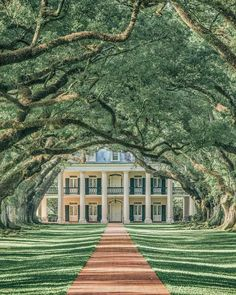 Top Things to do in New Orleans. Plantation Homes in New Orleans! New Orleans is an incredibly unique city with so many beautiful places to see. Check out our favorite spots in New Orleans on New Orleans Vacation, New Orleans Travel, New Orleans Trip, New Orleans Bayou, Weekend In New Orleans, New Orleans Homes, New Orleans Louisiana, Oh The Places You'll Go, Places To Travel