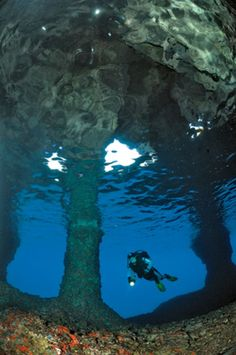 Diving in Croatia? You're probably thinking, you've gotta be kidding me.