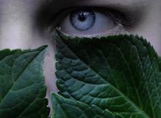 Appearance // Eyes // Aesthetic