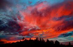 Sky Fire (thunderstorm sunrise+sunset winter mountains sky trees ). Photo by Photog49