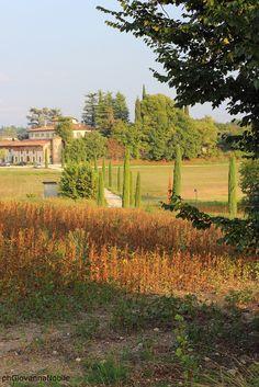 Campagna  www.lacuocaeclettica.it/