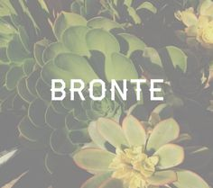 """Bronte.. I included this gender neutral baby name in a list of baby names inspired by writers awhile back. Little did I know the name also means """"thunder""""."""
