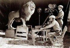 Shooting the MGM logo, 1924.