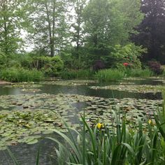 Les Jardins De Monet