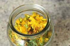 How to make St. John's Wort Infused Oil #MyHerbalSpring
