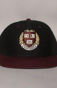 Harvard University Embroidered Hat $30