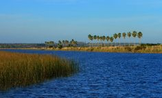 Humedales del Santa Lucía. Santiago Vázquez. Estos humedales son un ecosistema  de Áreas Naturales Protegidas de Uruguay y está ubicado en los departamentos de San José, Canelones y Montevideo, y abarcan un total de más de 20 mil hectáreas, de las cuales 2.500 están en Montevideo.