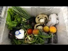 Planning for a Sustainable Local Food System - YouTube