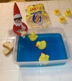 Feeding the Ducks                                                                                                                                                      More Christmas Elf, All Things Christmas, Outdoor Christmas, Xmas, Rubber Duck, Holiday Fun, Holiday Decor, Blue Pool, Naughty Elf
