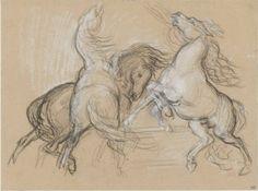 Trois chevaux cabrés et agités - Eugène Delacroix -