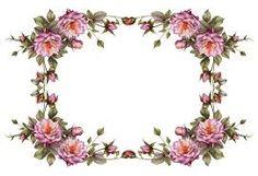 floral frames - Pesquisa Google