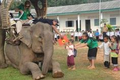 Students line up to accept books from the Elephant Mobile Library in Laos.