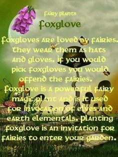 [Staring wide-eyed at the wonders surrounding us] Pagan. Be kind to one another, blessed be. Flower Poem, Flower Quotes, Elves And Fairies, Friends Are Like, All Nature, Lord, Wiccan, Witchcraft, Flower Fairies