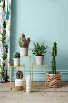 A cactus is a superb means to bring in a all-natural element to your house and workplace. The flowers of several succulents and cactus are clearly, their crowning glory. Cactus can be cute decor ideas for your room. Decoration Cactus, Decoration Plante, Interior Plants, Interior And Exterior, Interior Design, Plantas Indoor, Cactus E Suculentas, Mini Terrarium, Plants Are Friends