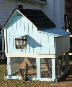 Natural Chicken Keeping: Size of coop, perch, # nest boxes, run per chicken