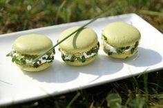 Macarons chèvre ciboulette