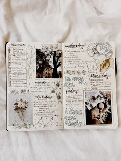 a whole page of pictures each day